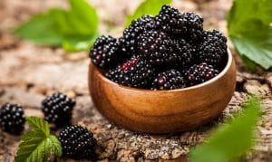 Blackberry (Punnet)